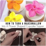 How To Turn A Marshmallow Into A Flower Shaped Cupcake Topper