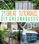 21 Amazing Greenhouses With Great Tutorials