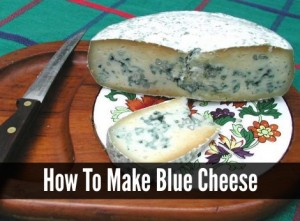 How To Make Homemade Blue Cheese