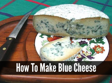 homemade-blue-cheese