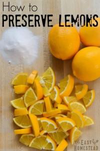 preserve-lemons