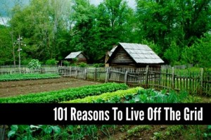 101 Reasons To Live Off The Grid