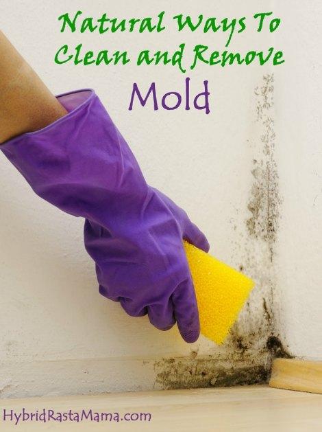 remove-mold