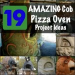 19 Amazing Cob Wood Fired Oven Ideas