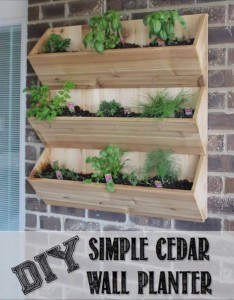 DIY Cedar Wall Planter