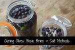 Curing Olives: Basic Brine & Salt Methods