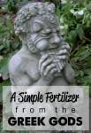 DIY Fertile Soil | A Simple Fertilizer From The Greek Gods
