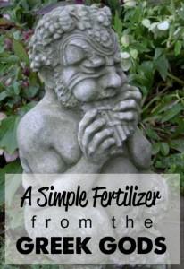fertile-soil