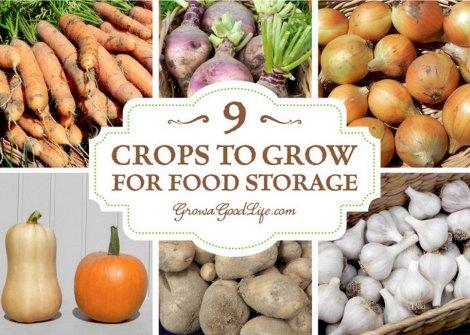 grow-for-food-storage