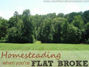 Homesteading When You Are Flat Broke | How To Homestead With Zero Money To Start