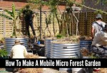 How To Make A Mobile Micro Forest Garden