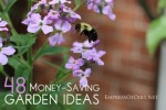 48 Smart Money-Saving Ideas For The Garden
