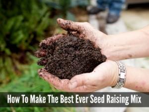 seed-raising-mix