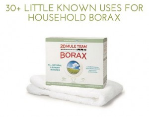 30+ Little Known Uses For Borax