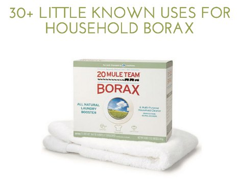 uses-for-borax