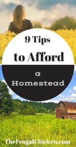 afford-a-homestead