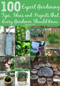 100 Expert Gardening Tips, Ideas, And Projects That Every Gardener Should Know