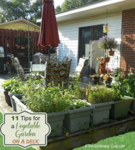 11 Tips For Growing A Vegetable Garden On A Deck