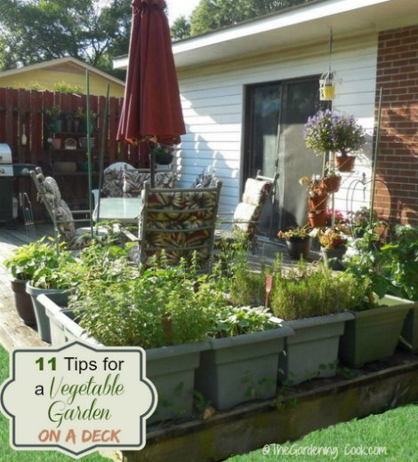 growing-a-vegetable-garden-on-a-deck
