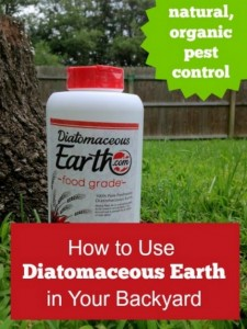 How To Use Diatomaceous Earth In Your Backyard