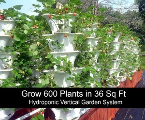 Grow 600 Plants in 36 Sq Ft Hydroponic Vertical Garden System