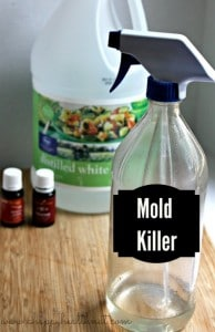 DIY Mold Removing Spray
