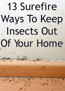 natural-ways-to-keep-insects-out-of-your-home