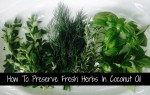 How To Preserve Fresh Herbs In Coconut Oil