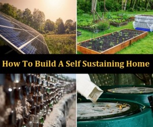 How To Build A Self-Sustaining Home