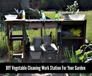 DIY Vegetable Cleaning Workstation For Your Garden