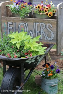 wheelbarrow-garden-trug