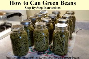 can-green-beans