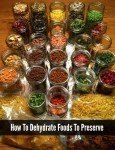 How To Dehydrate Foods To Preserve