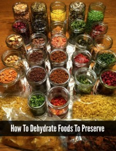 dehydrate-foods-to-preserve