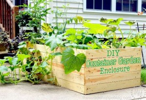 DIY Garden Container Enclosure