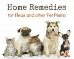Home Remedies For Fleas And Other Pet Pests