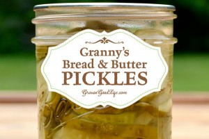 Homemade Bread And Butter Pickles Recipe