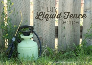 homemade-liquid-fence