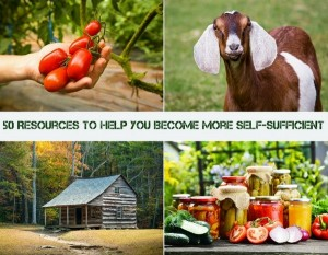 resources-to-help-you-become-more-self-sufficient