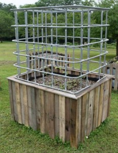 DIY Self-Watering Garden And Greenhouse