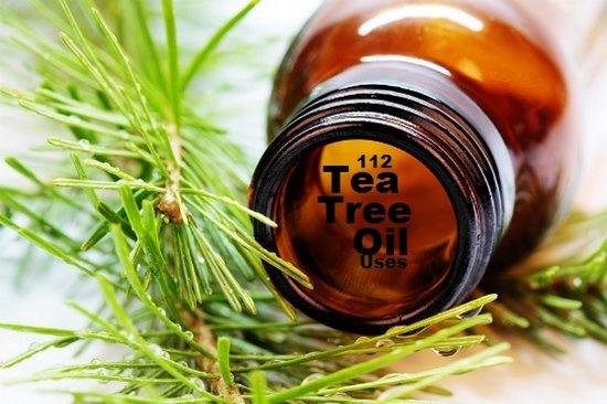 tea-tree-uses