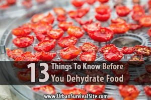 dehydrate-food