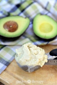 Homemade Avocado Ice Cream Recipe