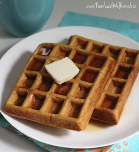 Freezer-To-Toaster Homemade Waffle Recipe