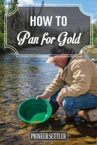 Guide: How To Pan For Gold