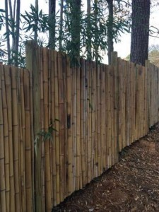 make-a-bamboo-fence