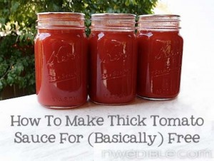 How To Make Tomato Sauce For Basically Free