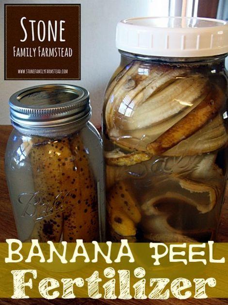 potassium-fertilizer-from-banana-peels