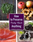 How To Preserve Pretty Much Anything