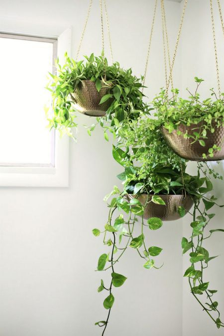 easy-hanging-planter